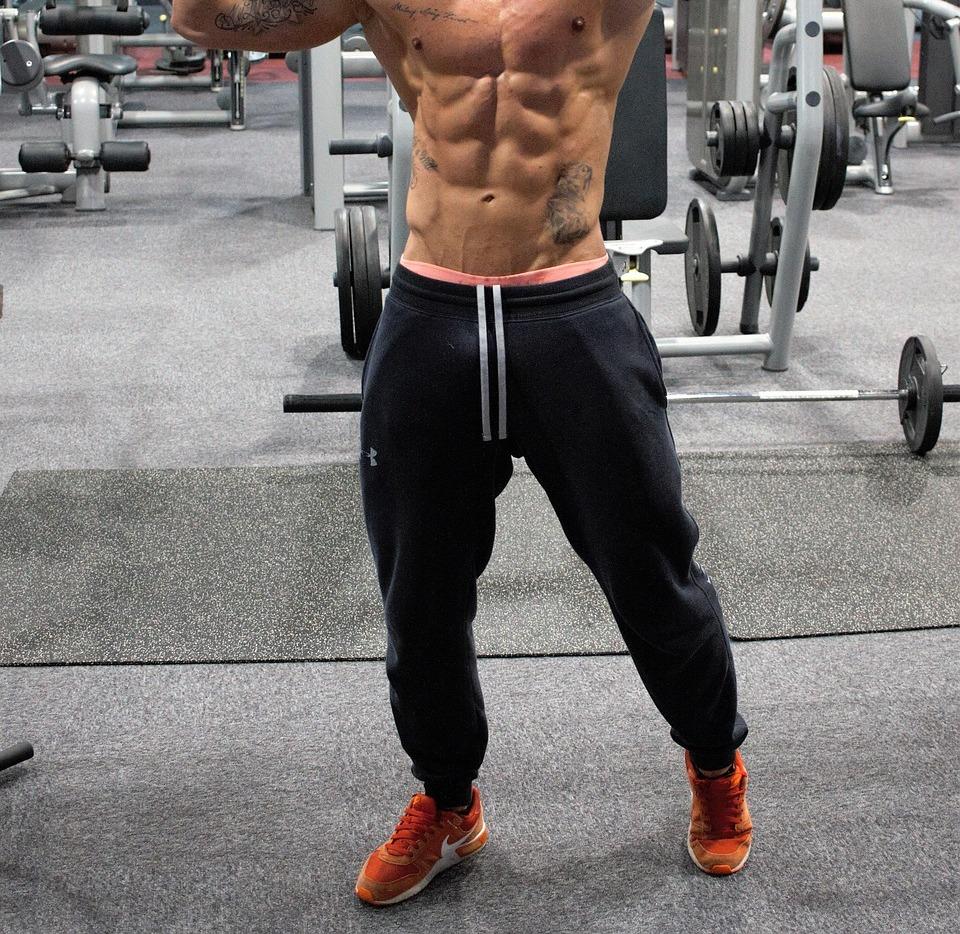 Muskeln, die von der Hülle bearbeitet werden
